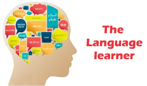 Adult foreign language classes